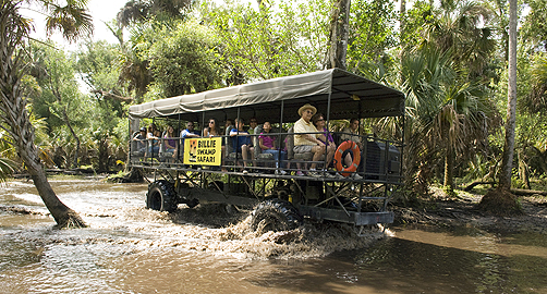 Billie Swamp Safari